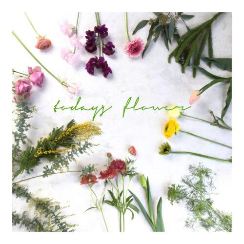 *本日のおすすめのお花
